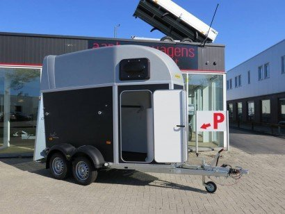 Humbaur Single plywood 1,5 paards trailer paardentrailers Aanhangwagens XXL West Brabant hoofd