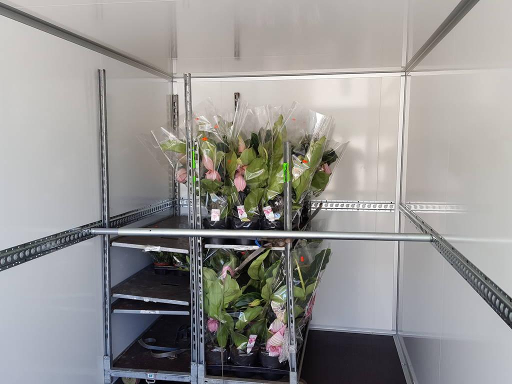 Proline bloemenwagen 407x181x200cm bloemenwagens Aanhangwagens XXL West Brabant vracht met steun