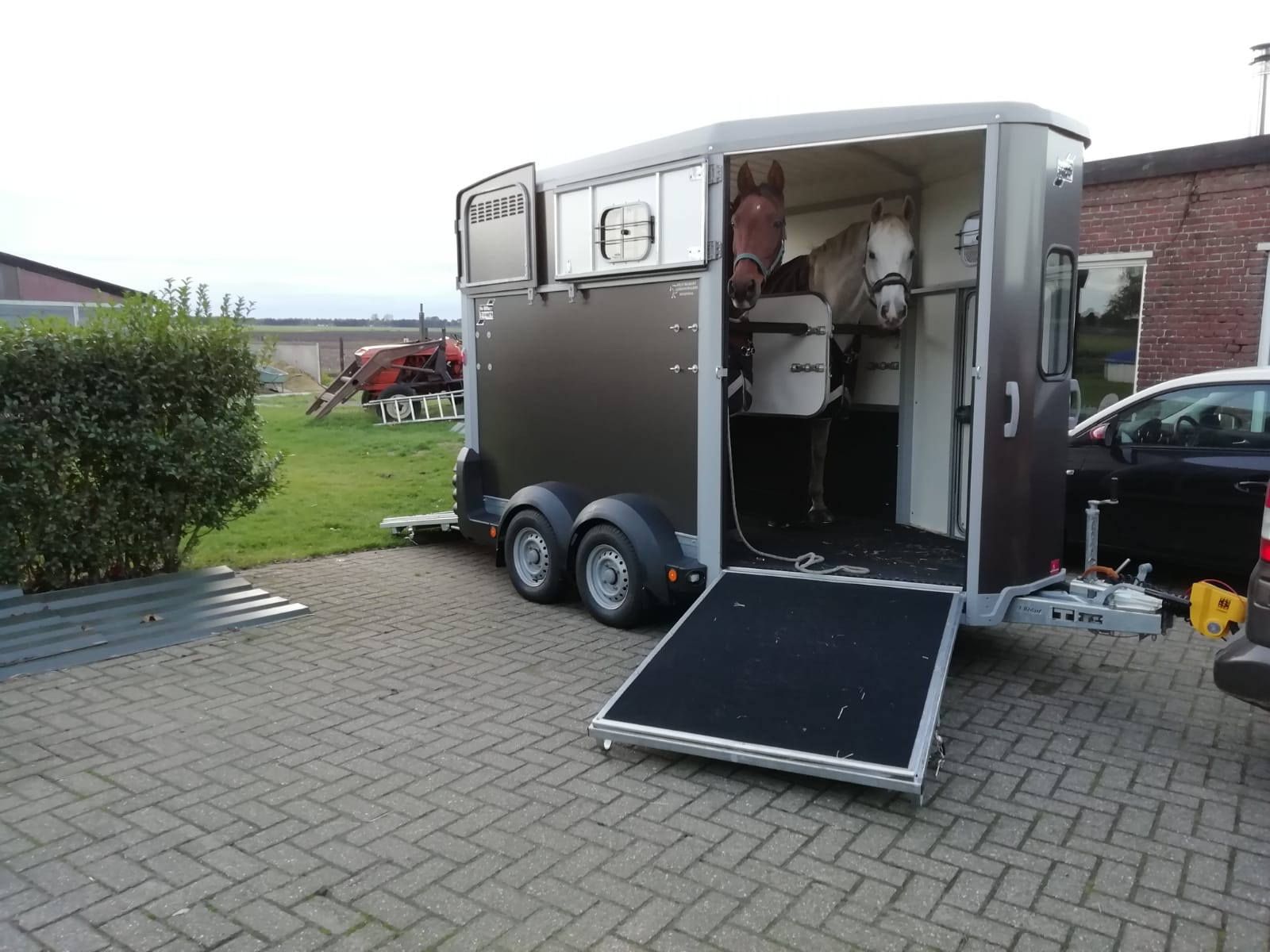 Ifor Williams HB511 2 paards paardentrailer