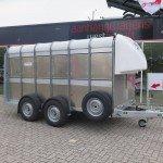 Ifor Williams veetrailer 366x178x183cm klep deur systeem veetrailers Aanhangwagens XXL West Brabant hoofd Aanhangwagens XXL West Brabant