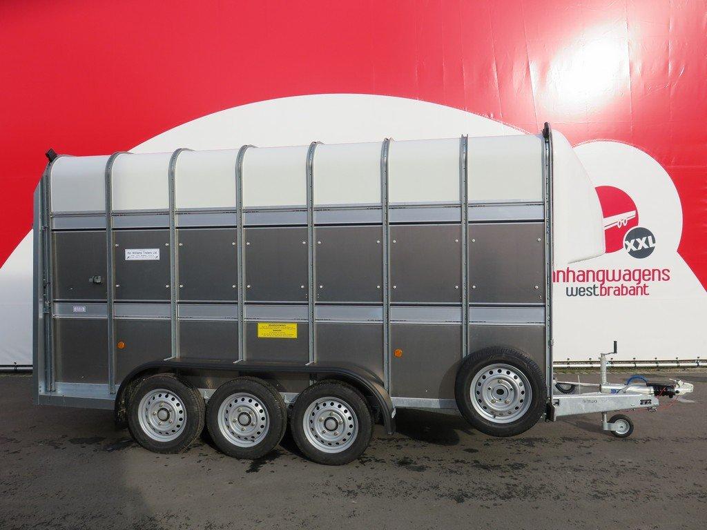 Ifor Williams veetrailer 427x178x213cm 3500kg tridemas Aanhangwagens XXL West Brabant 2.0 hoofd Aanhangwagens XXL West Brabant